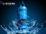 湖南衡阳无阻塞潜水轴流泵
