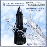 广西南宁高压轴流泵-上泵