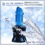 广西柳州自动化潜水轴流泵