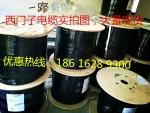 西门子6XV1830-3EH10 绿色双芯电缆,西门子DP电