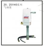 林肯气动泵2424