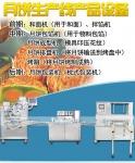 广西合浦月饼生产线,全自动月饼生产流水线