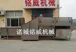 洗姜機報價 大姜清洗機廠家 洗大姜設備