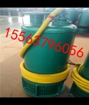 矿用泵BQS潜水泵 BQS排沙泵其阿奴微博防爆排污泵价格