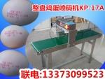 新疆鸡蛋喷码机,人气鸡蛋喷码机价格
