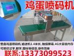 保定鸡蛋喷码机,沧州鸡蛋喷码机,喷码机价格