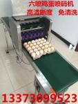 江西整盘六喷头鸡蛋喷码机