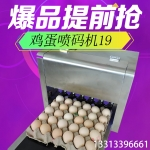 北京高速雞蛋噴碼機科力普KP-19噴碼機
