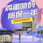 福建/浙江/广东喷码机,鸡蛋喷码机厂家供应