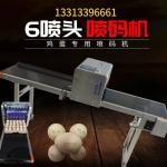 鸡蛋喷码机-广东6喷头高速鸡蛋机13313396661
