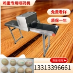 河南小型六喷头鸡蛋喷码机多少钱