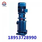 40DL6.2-11.2*2立式多级离心泵