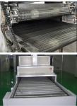 食用菌磨菇烘干箱 芒果烘干機 堅果食品網帶式干燥設備