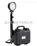 ZL8202-LED强光便携式移动照明灯