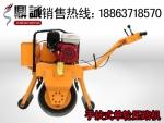全球领航品质手扶式单轮小型压路机山东鼎诚热卖