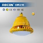 HRD92 LED免维护防爆灯