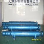 天津井用潜水泵/不锈钢潜水泵/潜水电泵