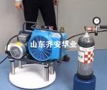 河北供應消防寶華打氣泵JII-W-H油水分離濾芯057679