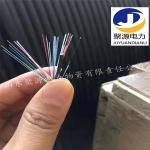 供應ADSS全介質自承式架空光纜