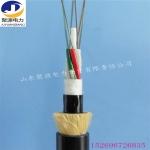 ADSS光纜PE護套光纜 架空通訊光纜生產廠家