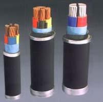 成都聚氯乙烯绝缘电力电缆(额定电压0.6/1kV及以下)