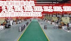 电磁调速电机型号/生产厂家 品牌:颖丽曦
