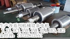YVF/YVP变频调速电机通风机 变频调速电机生产厂家供应