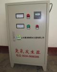 天津臭氧消防水箱自洁消毒器