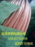 厂家促销价格铜包钢绞线
