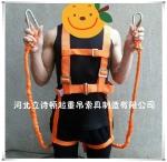 河北歐式五點式安全帶-雙板鉤全身式30米-半身式可拆卸安全帶