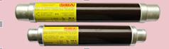 代理德国SIBA原装正品 3000213.31.5
