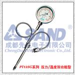 PT135G純機械指針式高溫熔體壓力表