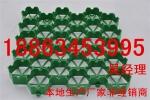 北京植草格厂家