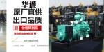 潍柴4105Y4柴油发动机高压油泵柴油泵