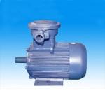 成都YB2系列(IP55)隔爆型三相异步电动机价格实惠