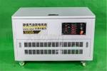 大泽动力40kw大型汽油发电机组参数