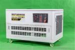 箱体式35kw汽油发电机组