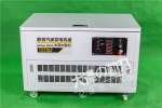 TOTO12发电机组/厂家直销汽油发电机报价