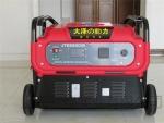 日本大泽10KW数码变频发电机