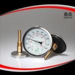 H221C工业锅炉温度计
