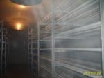 冷库储藏海鲜该如何保鲜?
