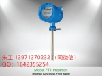 美國Foxboro熱式氣體質量流量計FTI-15I-DD-B
