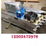 DXLQ-1-800*1000电热式水冷却胶带硫化机