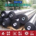 成都HDPE防水板 廠家直銷 價格優惠 質量保證