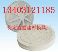 井盖模具  塑料井盖模具品质生产