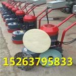 DMS-350型水磨石机 电动手推式地坪水泥表面打磨机厂家