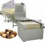 最常用的桂圆干燥设备|微波桂圆干燥设备