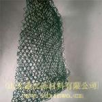 山东鑫沃三维植被网  环保塑料草坪网