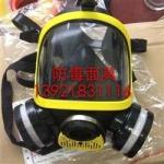 DF-02全面罩防毒面具 双过滤盒防毒面罩