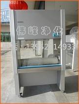 双人生物安全柜 生物安全柜 100%排生物安全柜 生物安全柜